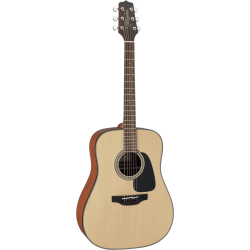 Guitare Acoustique GD10-NS...