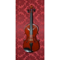 1 Violon  Set Allegro 1/4 d'occasion
