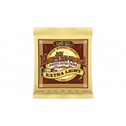Ernie Ball Earthwood Extra...