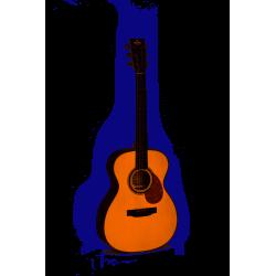 Guitare Acoustique OMT-1